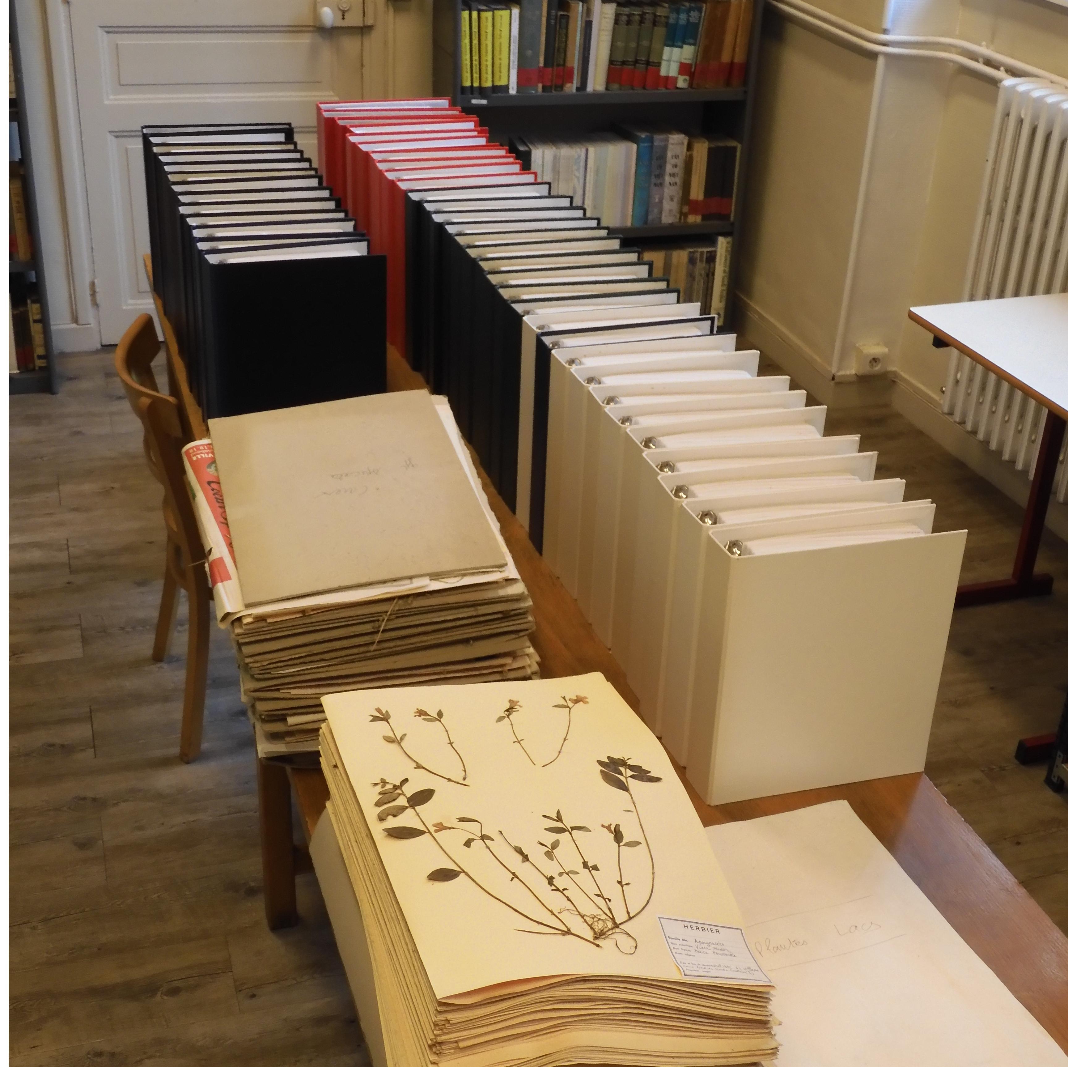 Herbier Lamaison à la bibliothèque d'UniVEgE