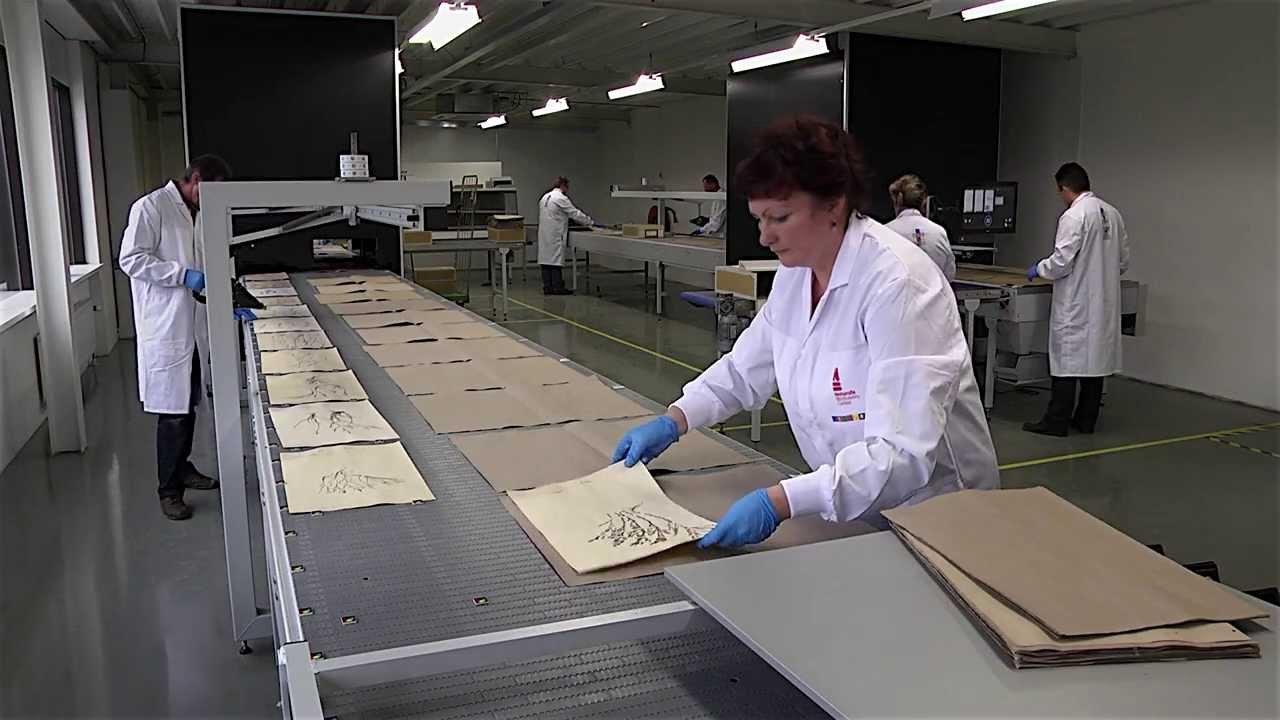 Chaîne de numérisation des planches d'herbiers (PICTURAE)